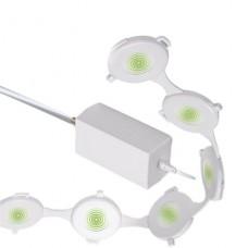 Аппарат магнитно-импульсной терапии ОРТОМАГ (ЯИТН.941519.004)